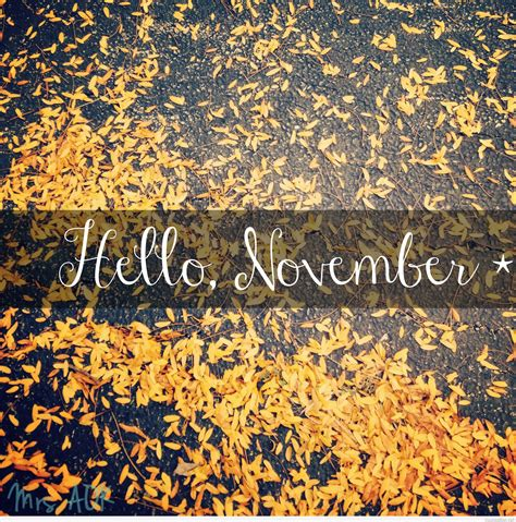 hello november photos
