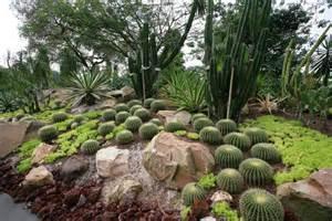 botanik garten singapore botanic gardens just run lah