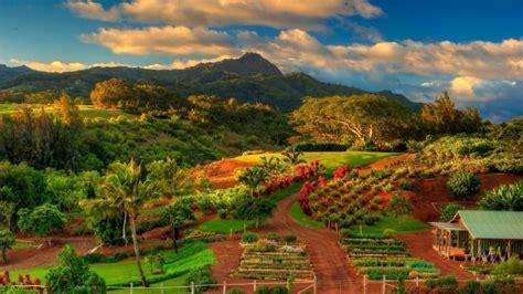 Hawaii Kauai Island Autumn Scenery N  Wallpaper #14242