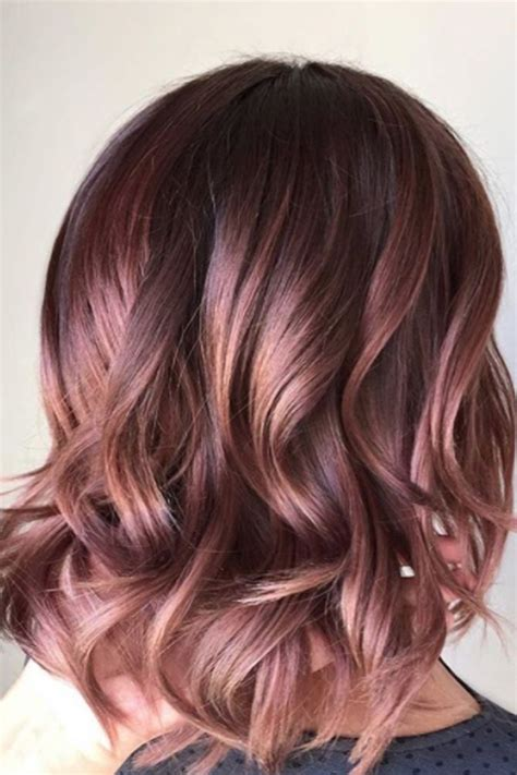 hair colors the 25 best hair colours ideas on winter hair