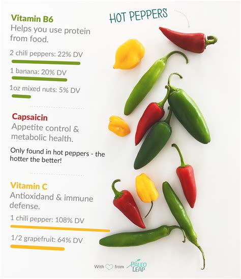 chili peppers paleo foods chili peppers paleo leap