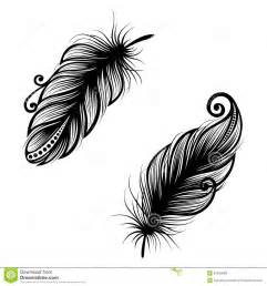 abstract feather bird royalty free stock images image