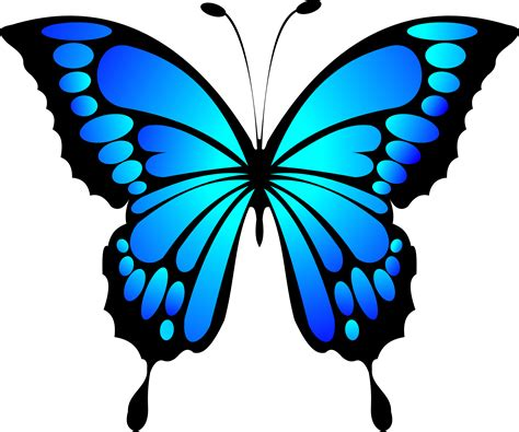blue png blue butterfly png www pixshark com images galleries