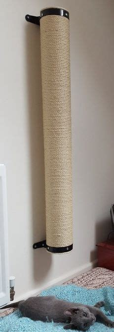 Kuas Cat Cisal 25 best 25 sisal ideas on sisal carpet rug and sisal rugs