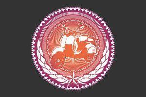Motorrad Versicherung Wer Darf Fahren by Roller Versicherung Das Gilt Es Zu Beachten