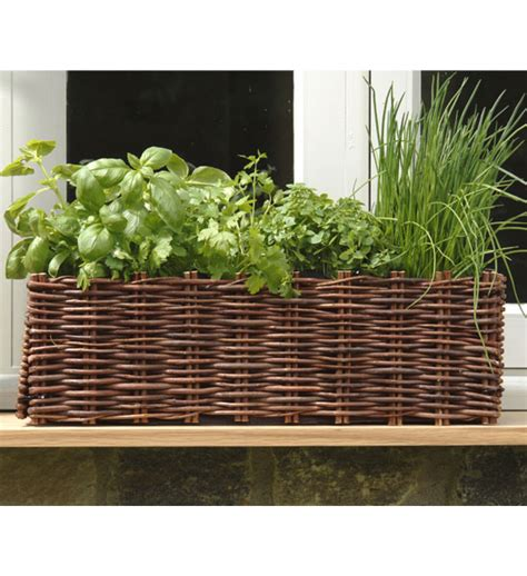 Herb Pots Outdoor by Blumenkasten Weide Burgon Amp Ball Im Greenbop Online Shop