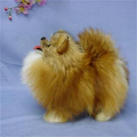 pomeranian stuffed animal ranran rakuten global market stuffed pomeranian and world specialties in