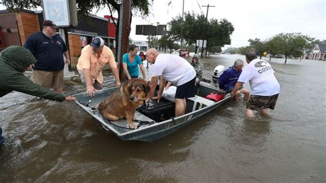 boat races in texas 2017 hurricane harvey victims how to help abc news