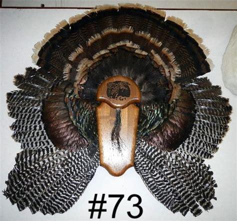 turkey feather cape