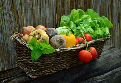 x fruits and vegetables what fruits and vegetables are in season and when