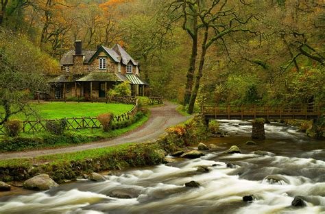 serenity now tiny house in the forest on a hill small house river water forest park trees bridge leaves colorful