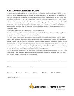 Adequacy Of Resources Report Template Fillable Adelphi On Release Form Adelphi