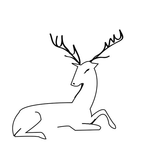 coloring pages deer head deer head colring pages coloring pages