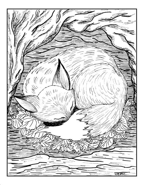 advanced coloring pages of animals fox animal coloring pages colouring adult detailed
