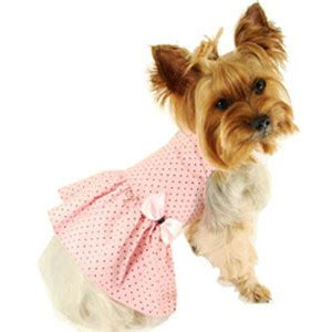 clothes for teacup yorkies clothes for yorkie puppies dress the clothes for your pets