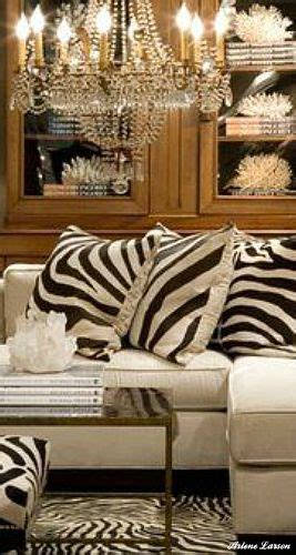 zebra print living room best 25 zebra living room ideas on pinterest classic