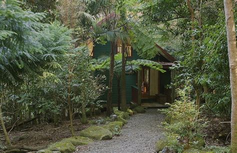Rainforest Cabins Gold Coast rainforest cabin accommodation gold