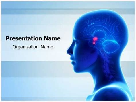 brain pituitary gland powerpoint template background