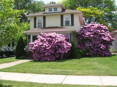 Garden Ideas For Small Front Yards Landscape Design Ideas For Small Front Yards Price Landscaping Gardening Ideas