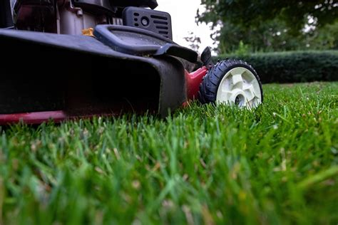 sqm synthetic grass fake turf artificial mat plant