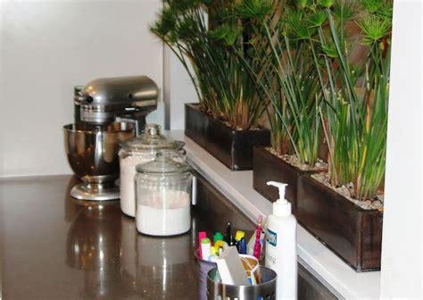 plants living room divider room divider divider