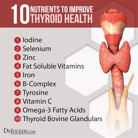 Best Detox To Do Incrase Thyroid by 10 Nutrients To Improve Thyroid Function Drjockers
