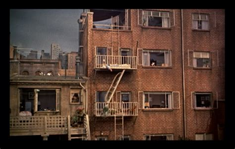 the window at the rear of the apartment the shadow stories books production skills cinematography rear window alfred