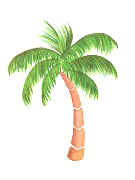 Palm Tree Wall Sticker quot tropical palm tree watercolor quot stickers by