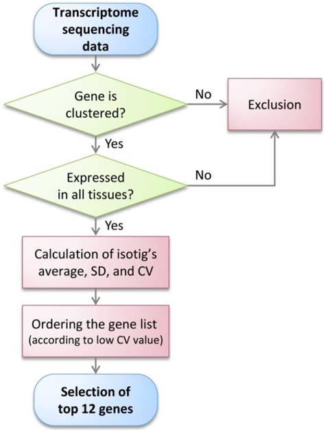 flowchart reference flowchart reference create a flowchart