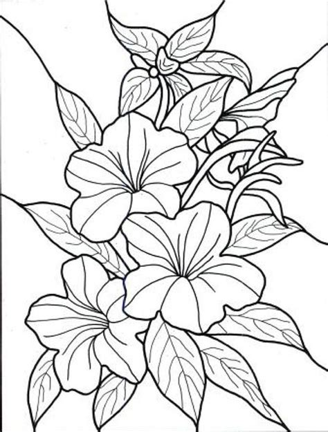 Hawaiian Flowers Coloring Pages tropical flowers coloring pages coloring home