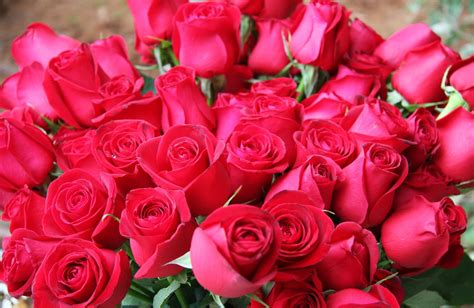 Bouquet Of Roses by Beautiful Bouquet For The Lord