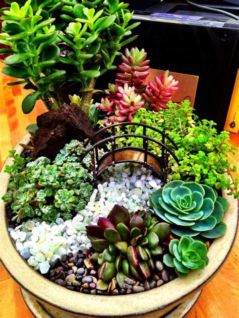 Miniature Succulent Dish Garden Succulents Pinterest Dish Garden Ideas