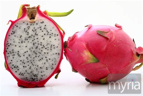 Tropical Home Decor Ideas by Strange Fruit 15 Exotic Fruits From Around The Globe Myria
