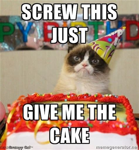 Birthday Cat Meme Generator - best 25 grumpy cat meme generator ideas on pinterest no