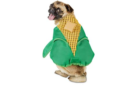 corn on the cob for dogs cutest costumes inspired by food today