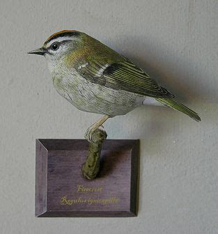 Papercraft Birds - papercraft paper models and birds on