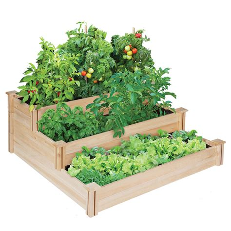 Raised Garden Vegetable Garden Box Bed Cedar Tier Planter Planter Box Vegetable Garden