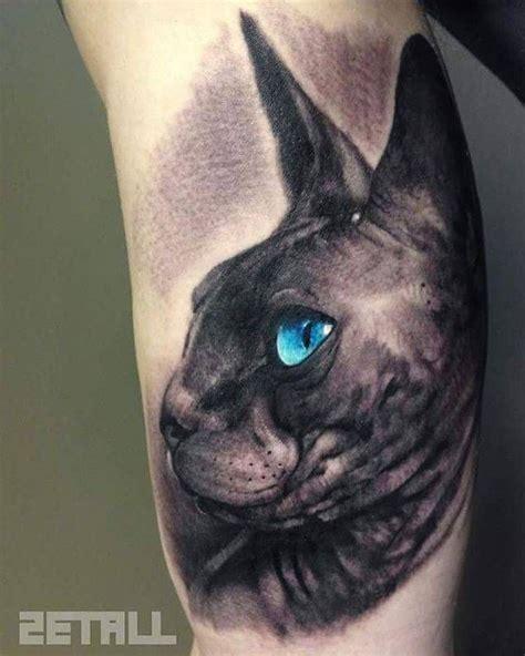 sphynx cat tattoo 10 best sphynx tatoo images on pinterest cats sphynx