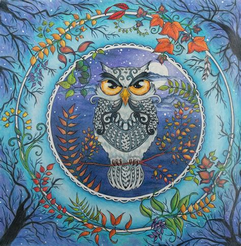 enchanted forest colored owl enchanted forest colored pencil and paint coloring