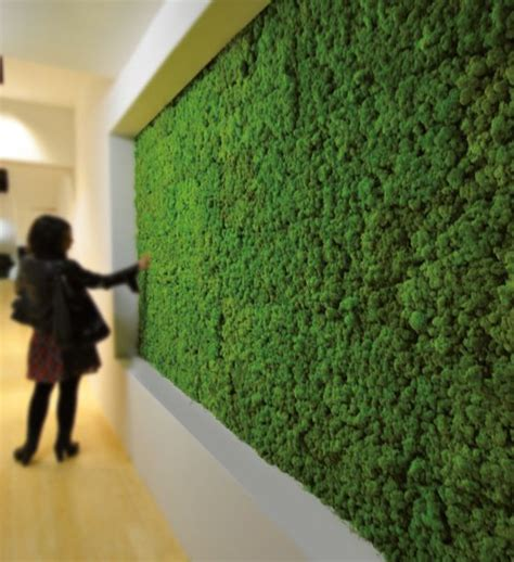 giardini verticali interni giardini verticali interni
