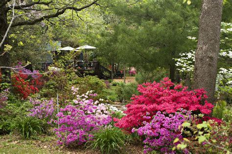 azalea path arboretum and botanical gardens inc photo