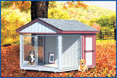 backyard dog kennel ideas outdoor dog kennel natural habitat outside nj news day