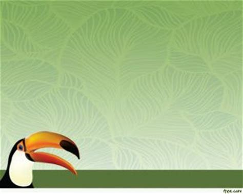 powerpoint zoo themes 17 best images about animals backgrounds for powerpoint on