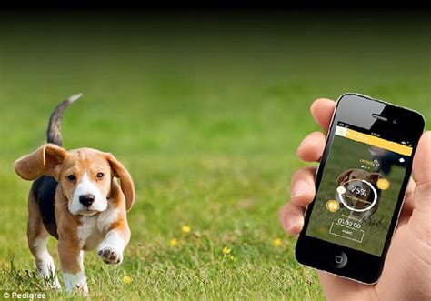 puppy app my fitness pal for dogs exercise and calorie counting app tells pet owners how much