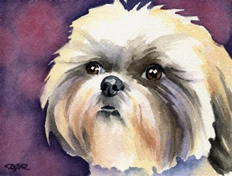 shih tzu paintings shih tzu signed print by artist dj rogers by