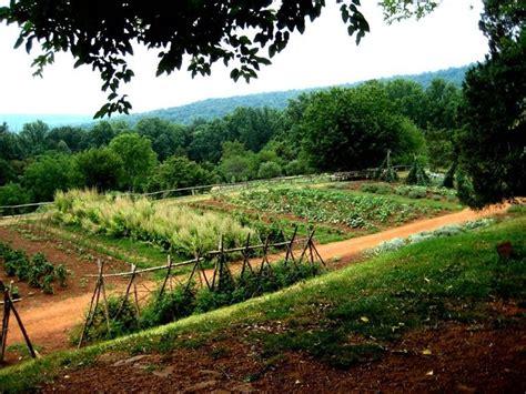 fare un orto in giardino fare l orto orto come fare l orto