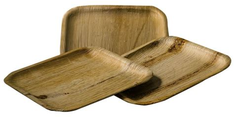 bamboo plates eco friendly disposable bamboo plates a great alternative to plastic ones