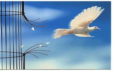 fotos e imagenes artisticas gratuitas libres de derechos dia de la libertad poemas de amor