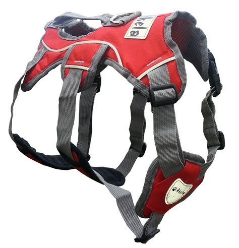 puppy harnesses akela tracker sport harness padded reflective