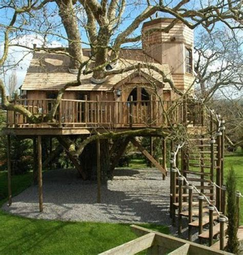 coolest tree houses awesome treehouses 32 pics